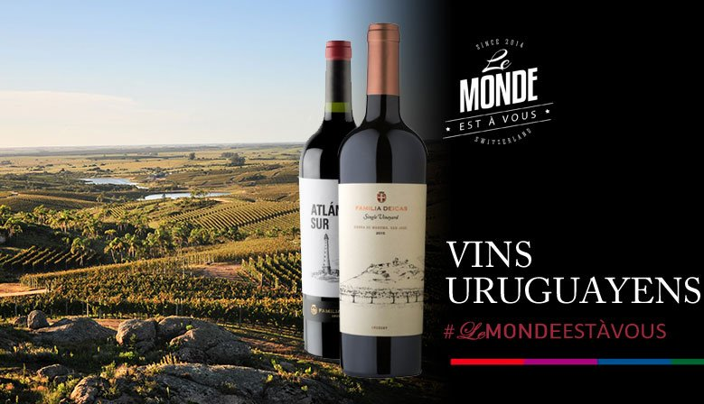 Vins Uruguayens